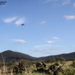 FAC/JTAC da Força Aéra Portuguesa direciona CAS de dois Alpha Jet Portugueses a uma ação directa sobre um objectivo integrado numa comapanhia de Comandos