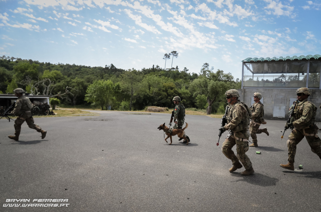 1º BIPARa and 173rd Airborne Brigade War Dogs Orion 17